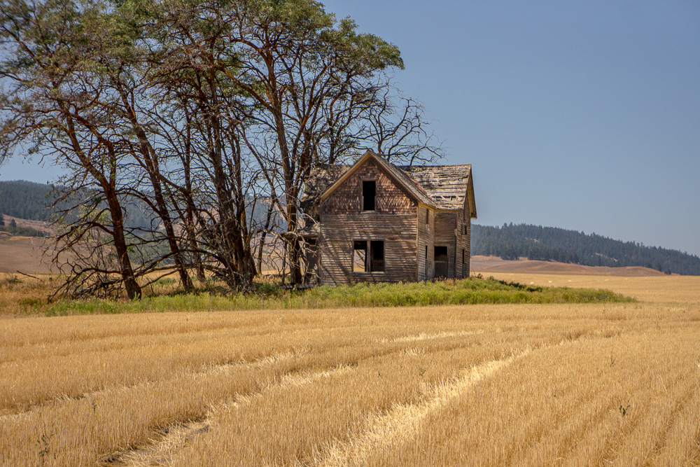 Old Homestead, Waterville Plateau
