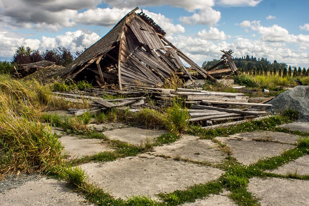 Collapsed Barn in Edison, WA