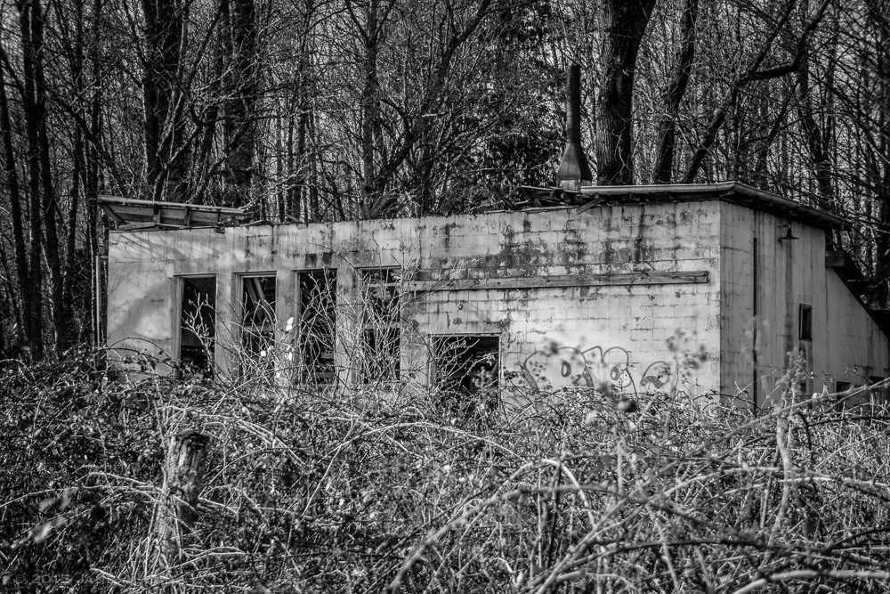 Northern State Hospital's Slaughterhouse