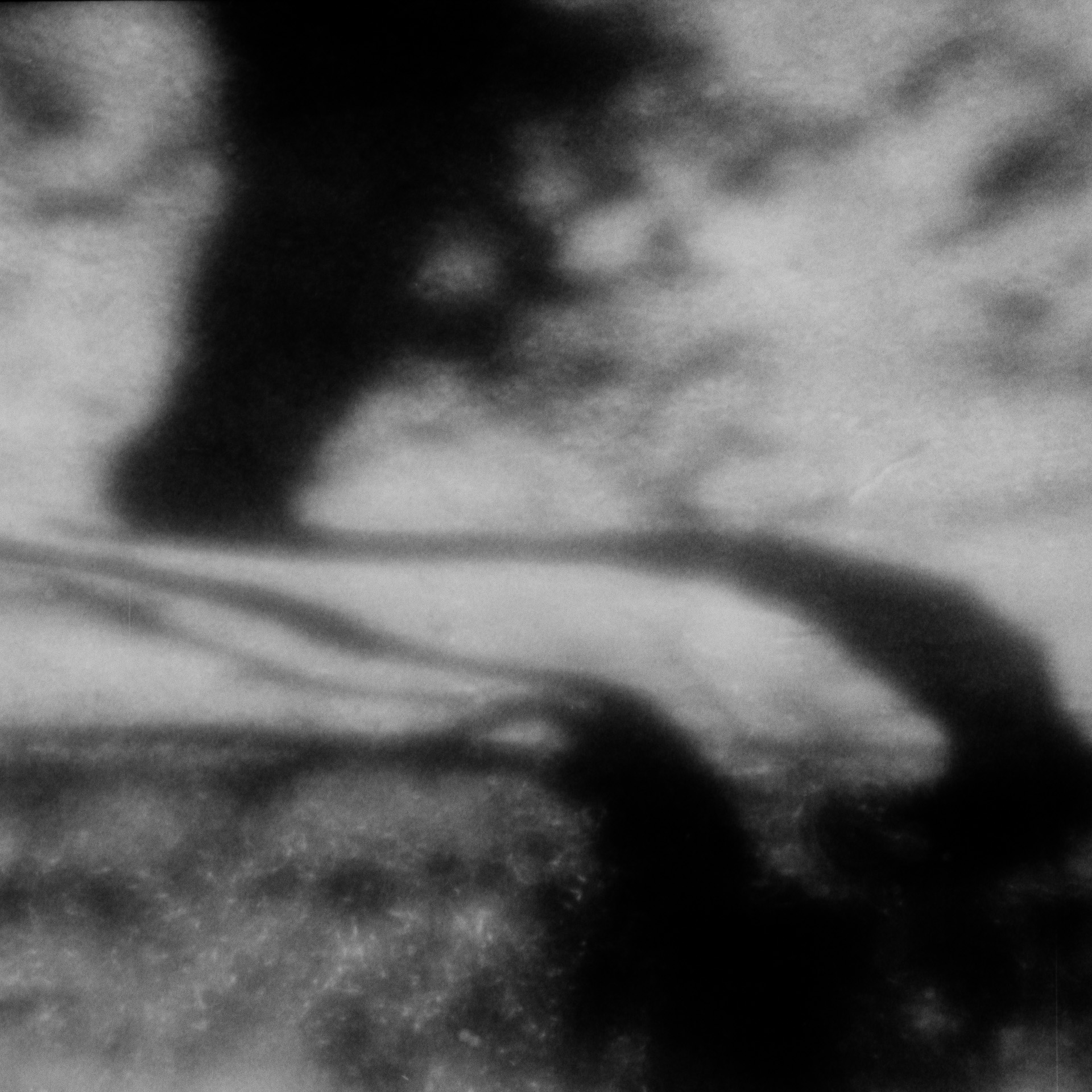 Shadow Flow