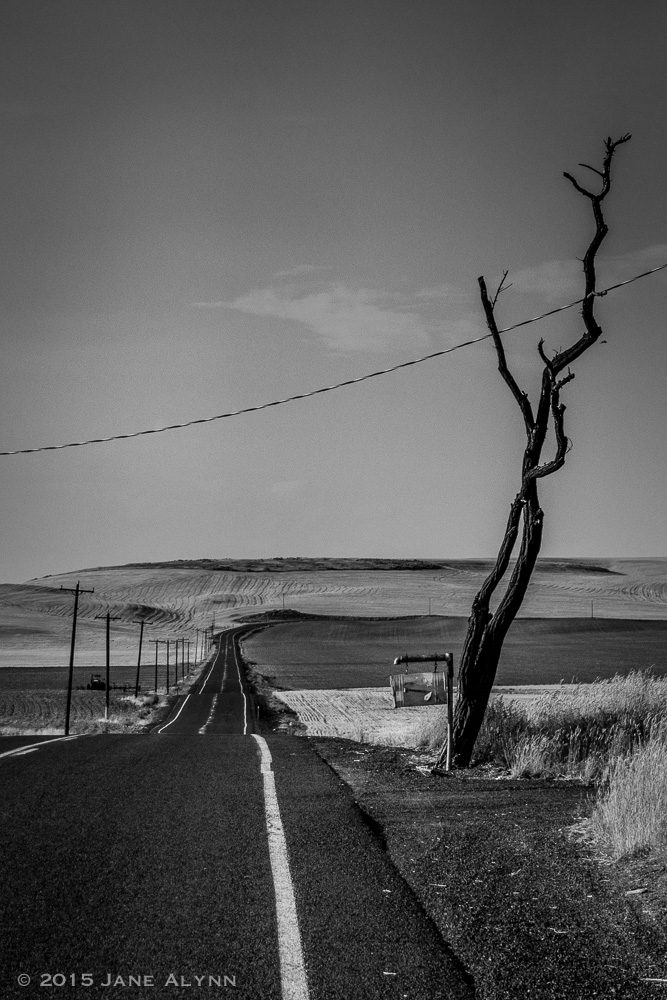 Rural Road, Douglas County, Washington