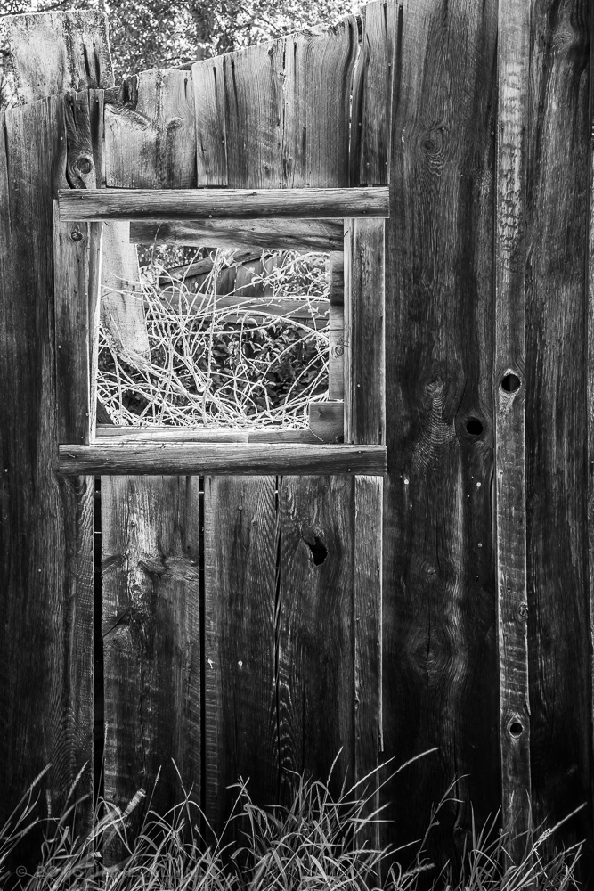 Window in an abandoned building in Bodie