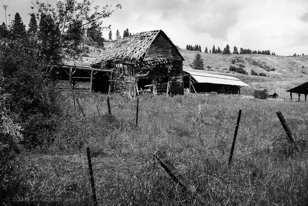 Collapsing barn in Malo