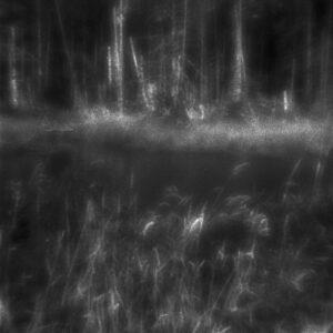 Dark Slough, zone plate phoptograph,gelatin silver print